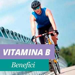 Tutto sulla vitamina b