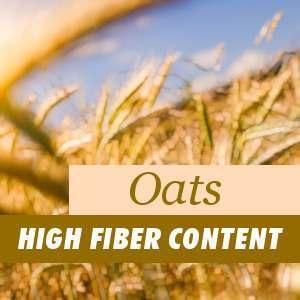 Oats, high fiber content