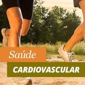 Tudo sobre a saúde cardiovascular