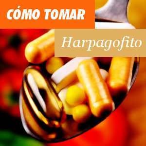 Cómo tomar el Harpagofito
