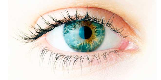 Salud ocular y Omega 3