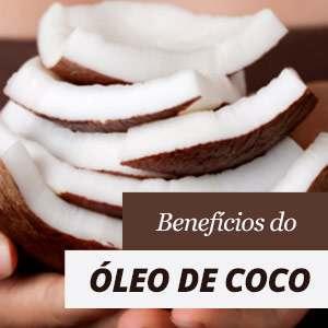 Tudo sobre o óleo de coco