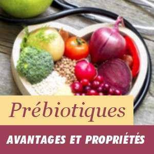 Prébiotiques, avantages et propriétés