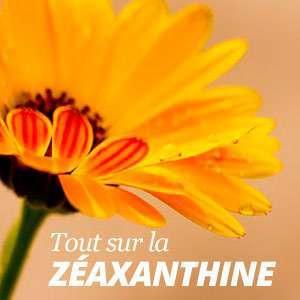 Tout sur la Zéaxanthine